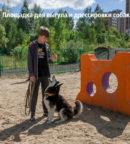 Площадка для выгула и дрессировки собак