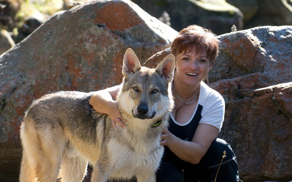 как научить собаку командам по совету кинолога Нины Андреевой